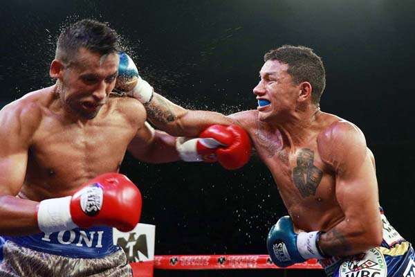 https://fightnews.com/boxing/bercheltko3barros11.jpg